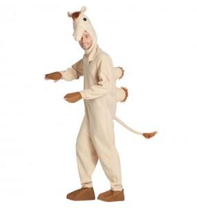 Costume da Cammello per uomo