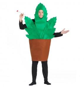 Costume da Pentola con marijuana per uomo