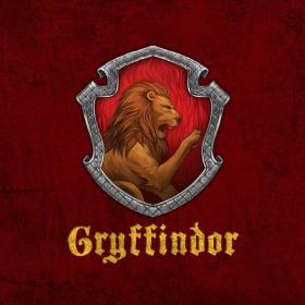 Merchandising Grifondoro da Harry Potter