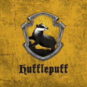 Merchandising Tassorosso da Harry Potter
