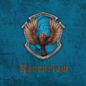 Merchandising Corvonero da Harry Potter