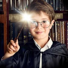 I bacchette originali di Harry Potter